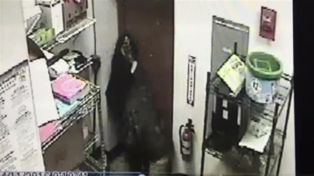 [NECN]CAUGHT ON CAMERA: Subway Employee Fights With Masked Robber