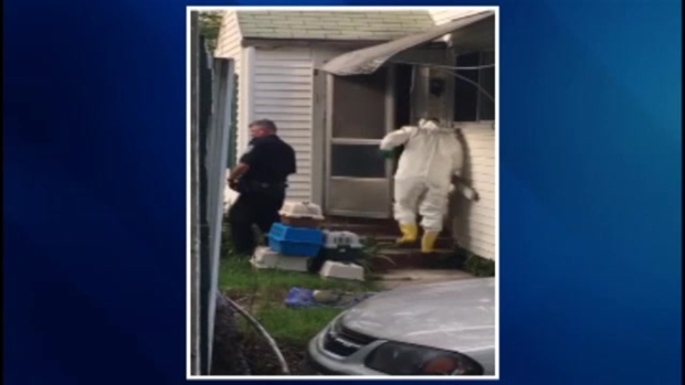 [NECN] Crews Remove Cats From Home in Upton, Massachusetts