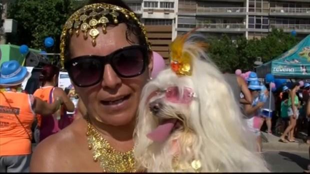 Brazil's Carnival Pet Parade