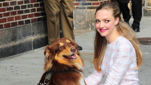 [NATL] Celebrities and Their Rescue Dogs