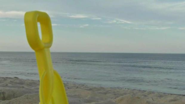 [NECN] Shark Scares at Cape Cod Beaches