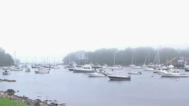 [NECN] Shark Sighting in Manchester-by-the-Sea