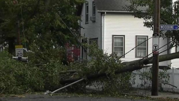 Storm Knocks Down Trees, Power Lines Along New England Coast