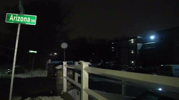 [NECN] Arlington Police Investigating After Woman Stabs Man Multiple Times Overnight
