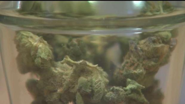 [NECN] Tips for 1st-Time Pot Buyers