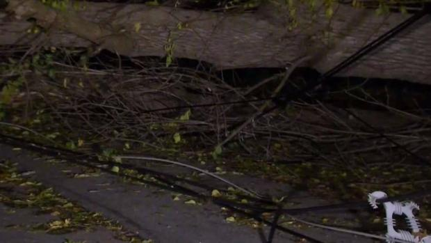 [NECN] Trees and Power Lines Still Down in Andover