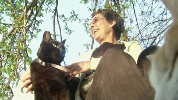 Woman Turns Home Into Cat Sanctuary, Moves Into Trailer