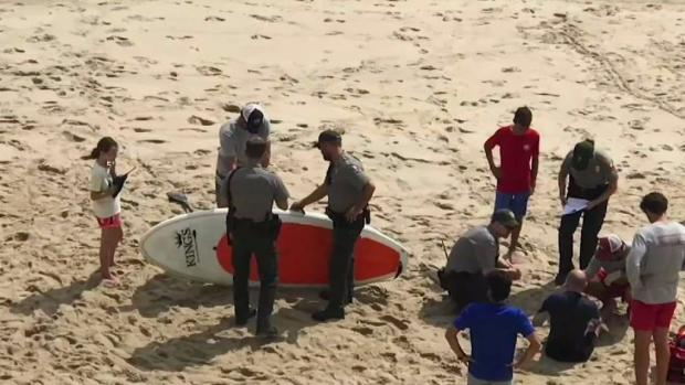 [NECN] Cape Cod Beach Closed After Shark Scare
