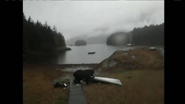 Bear Butts in on Kayaking Trip