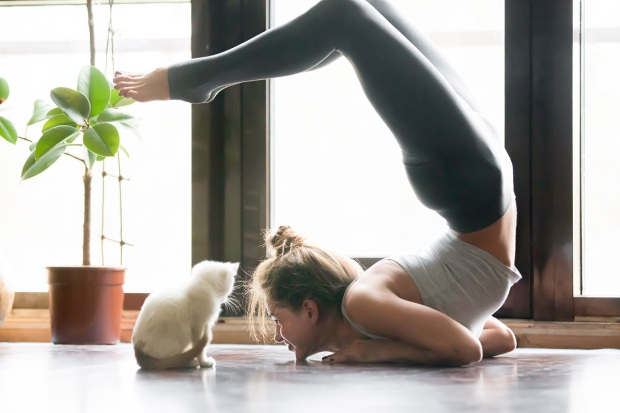 [NATL] 6 Ways Owning a Pet Can Boost Your Health