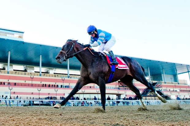 Mud in your eye: Always Dreaming wins Kentucky Derby in slop
