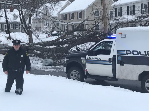 Storm Knocks Down Trees, Power Lines