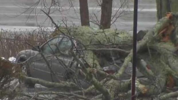 [NECN] High Winds Cause Damage Around Massachusetts