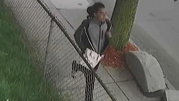 [NECN] Man Accused of Stealing 94-Year-Old Woman's Purse