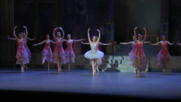 The Business of Ballet