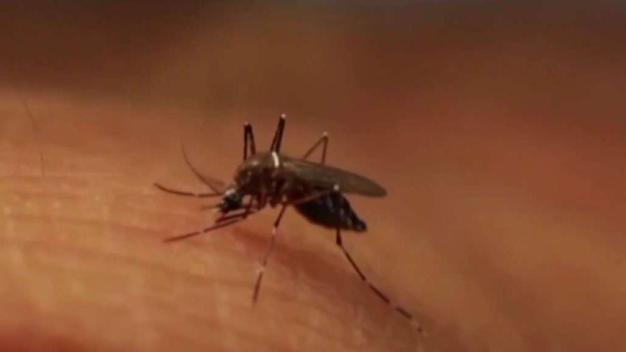EEE Virus Triggers Second Round of Spraying in RI