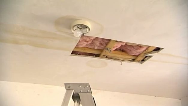Spring It On: Home Repairs
