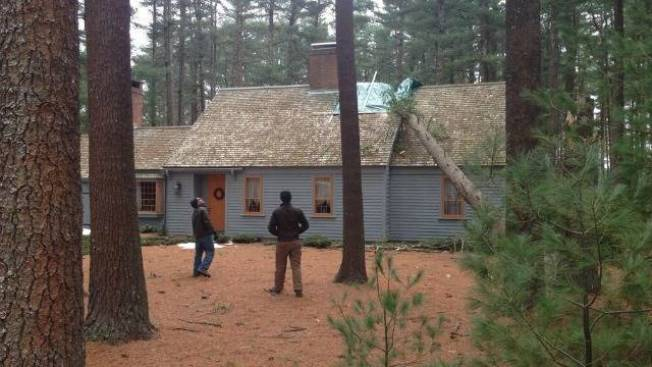Tree Falls Through Roof of Norfolk, Mass. House