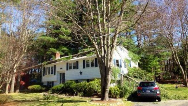 Tree Falls Onto House, Car; High Winds to Blame