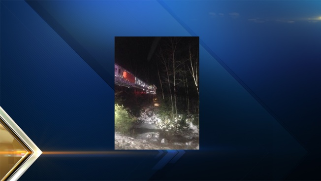 Police, K-9 Find Unconscious Man in Woods After Accident