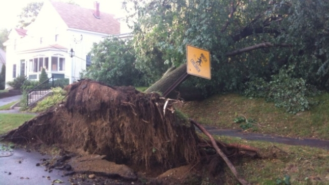 Trees Fall Into Houses, Bring Down Power Lines in Andover