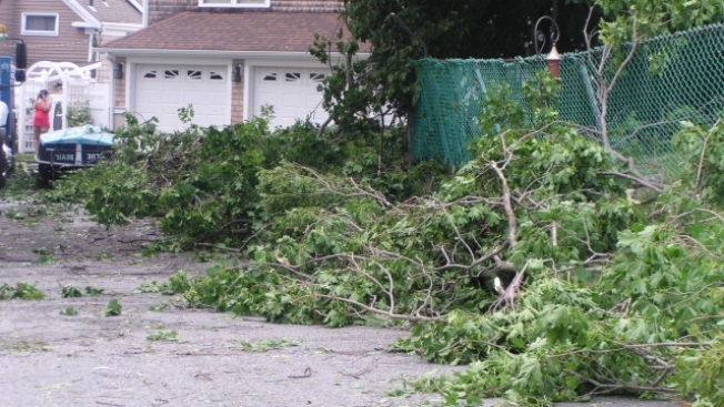 Strong Winds Down Trees, Powerlines in Hull