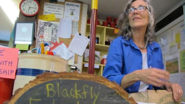 Vermont Village Hosts Festival to Celebrate the Nuisance Blackflies
