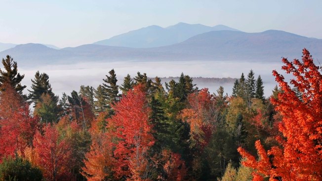 White Mountain Businesses Peak with Fall Foliage