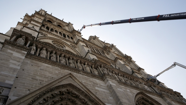 Notre Dame's Bees Survived the Fire, Drunk From Smoke