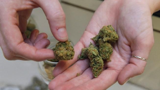 Report: Bob Lobel Using Medical Marijuana to Avoid Opioid Painkillers