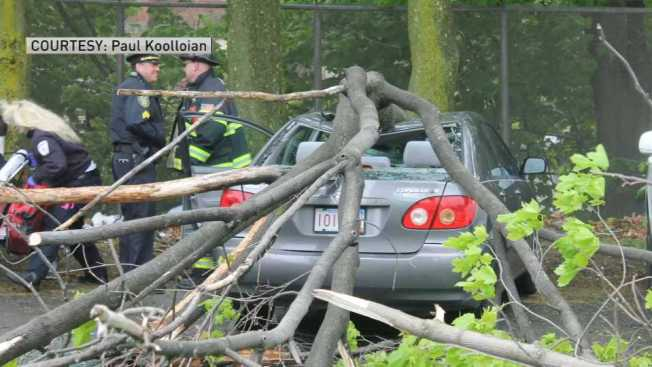Man Injured After Large Tree Limb Falls on Car
