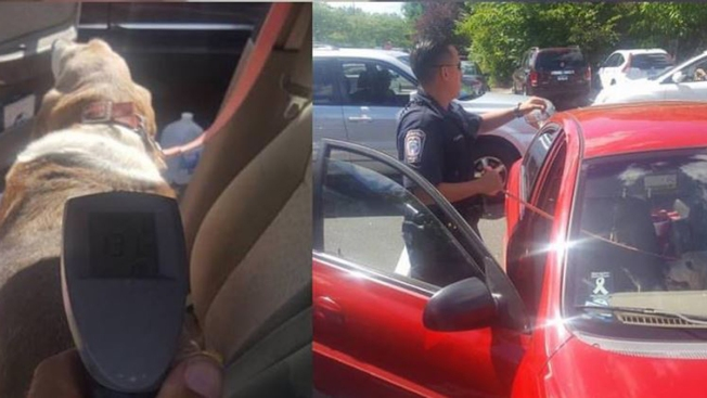 Brookfield Police Rescue Dog from 114-Degree Car