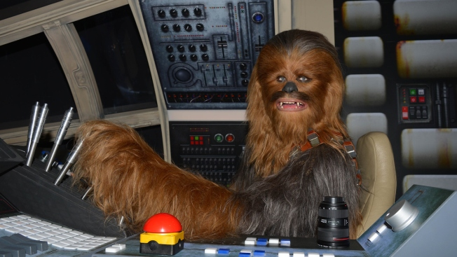 'Chewbacca' Arrested at Polls on Election Day in Ukraine