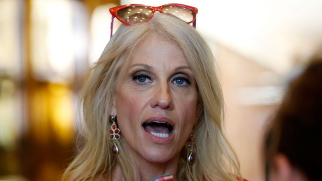 Trump's Deportation Force 'To Be Determined': Kellyanne Conway