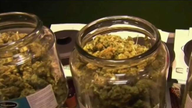 City Sets Timetable for Recreational Pot Sales