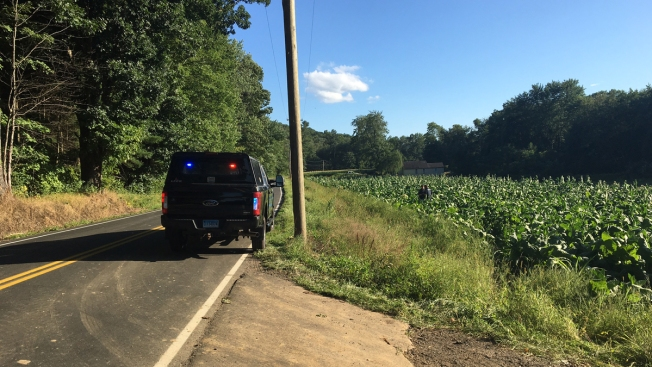 Police ID Victim of Crash Who Might Have Been in Suffield Tobacco Farm for Days