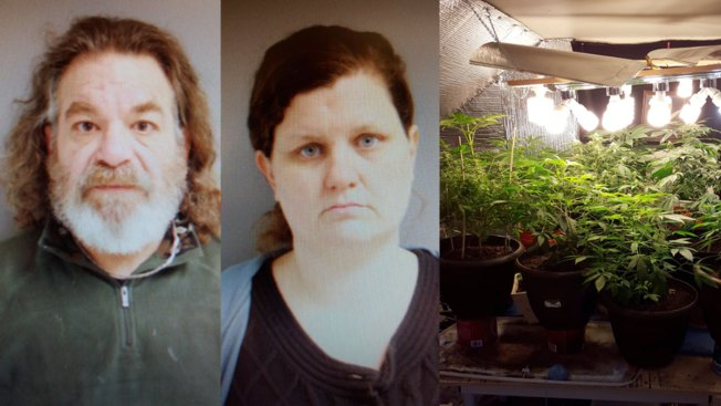 Police: 2nd Grader's Farm Story Leads to Marijuana Operation Bust