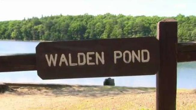 Search for Missing Man at Walden Pond Suspended for the Day