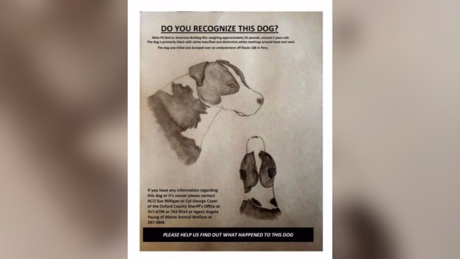Dog Killed, Dumped Over Embankment in Maine