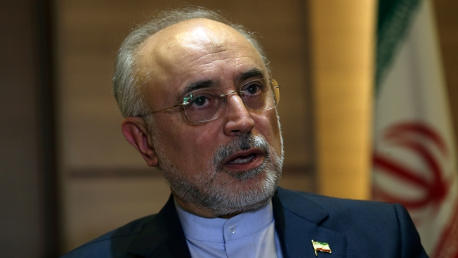 Iran's Nuclear Chief Says Atomic Program Is Strong