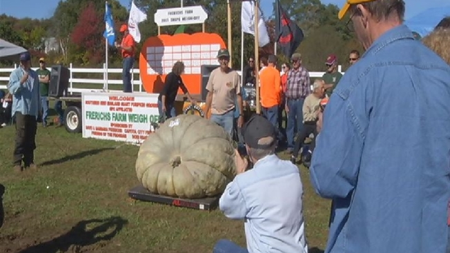 Rhode Islander Beats Record With Pumpkin at More Than 1 Ton