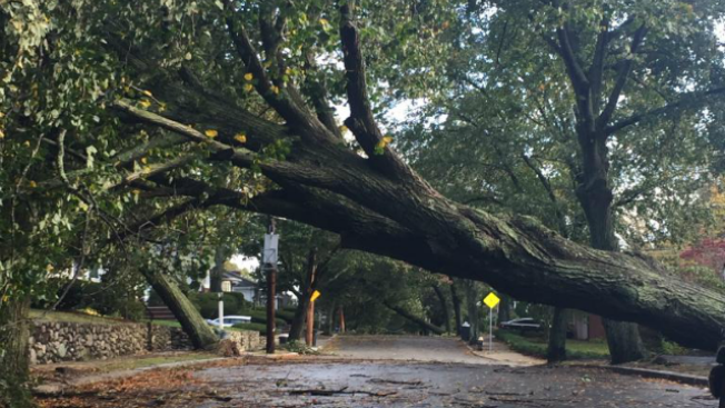 More Than 300K Still Without Power Days After Storm