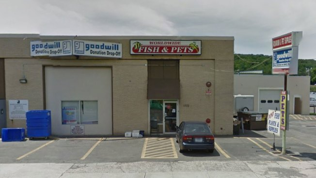 Police Bust Illegal Night Club at Former Fish Store
