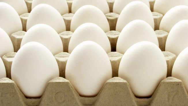 13 States Sue to Stop Mass. Cage Free Eggs Law