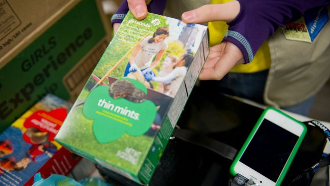 Not so sweet: Girl Scout cookie cash boxes stolen