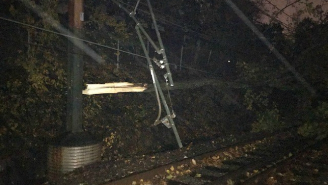 Downed Tree Prompts Shuttle Bus Service for MBTA Green Line