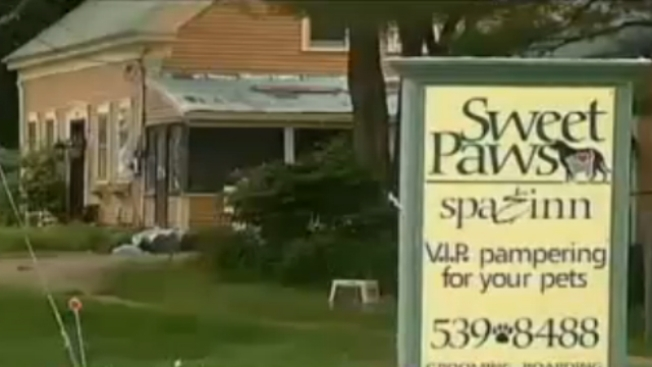 Owner of N.H. Pet Spa Charged With Animal Cruelty