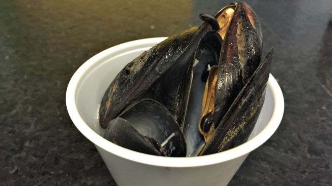 40-Year-Low for Maine Mussel Harvest