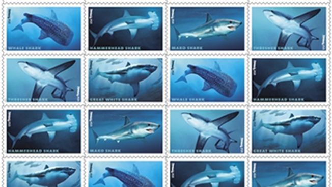 Sharks Surface at U.S. Post Offices With Forever Stamps