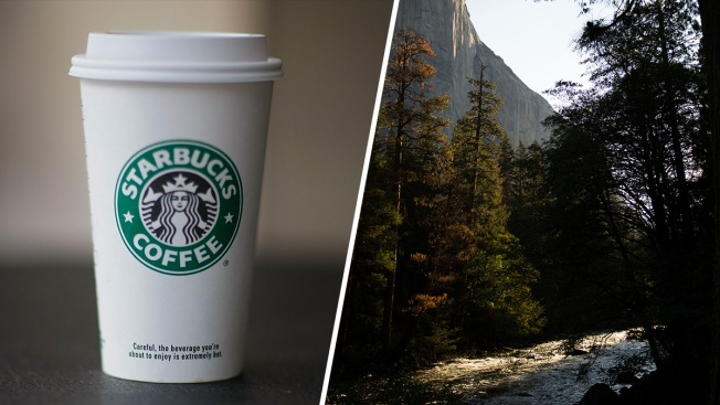Over 20,000 Sign Petition to Stop Starbucks From Coming to Yosemite